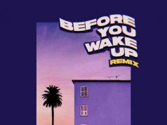 Adekunle Gold ,Vanessa Mdee ,Before You Wake Up ,Remix,