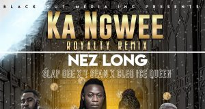 Nez Long , Ka Ngwee (Remix), Slapdee , Tsean , Cleo Ice Queen,