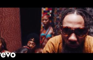 """VIDEO: Phyno ft. Flavour – """"Vibe"""" [Video]"""